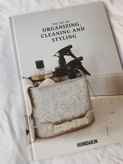 The art of organizing, cleaning and styling